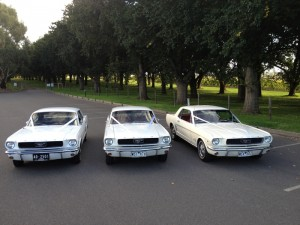Classic Car Hire Melbourne Mustang Limo Hire Vintage Car Hire